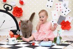 кошки и дети