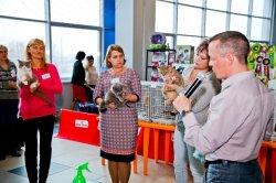 выставка в Тольятти