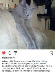 Чарли из Тольятти