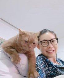 Херши и Ко из Бангкока